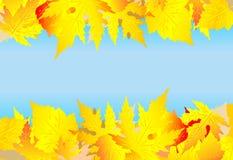 Fondo del vector del otoño Fotografía de archivo