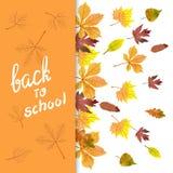 Fondo del vector del otoño con las hojas coloridas de la acuarela Imagen de archivo libre de regalías