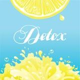 Fondo del vector del Detox Foto de archivo