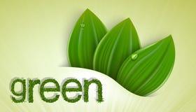 Fondo del vector en colores en colores pastel con verde Imágenes de archivo libres de regalías