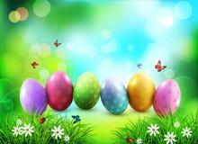 Fondo del vector Huevos de Pascua en hierba verde con las flores blancas Fotografía de archivo libre de regalías