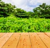 Fondo del verano con de madera Foto de archivo libre de regalías