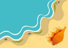 Fondo del verano con el shell en una playa Imagenes de archivo