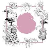 Fondo del verano con las flores, frutas y pájaros del flamenco, blancos y negros ilustración del vector