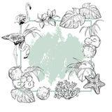 Fondo del verano con las flores tropicales, las frutas exóticas y los pájaros del flamenco stock de ilustración