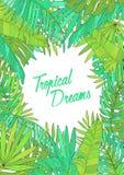Fondo del verano con las hojas tropicales, monstera, chamaedorea, el plátano y otras palmas Plantilla para el cartel, cartel libre illustration