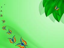 Fondo del verano con las hojas y las mariposas brillantes del arco iris Imágenes de archivo libres de regalías