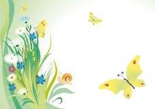 Fondo del verano con las mariposas Imagen de archivo libre de regalías