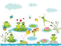 Fondo del verano con las ranas Fotografía de archivo