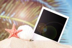 Fondo del verano fotos de archivo libres de regalías