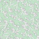 Fondo del verano del contorno de los wasples blancos en un fondo verde Textura ligera para las telas, tejas, papel pintado libre illustration