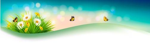 Fondo del verano de la naturaleza con la hierba, las flores y las mariposas stock de ilustración