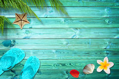 Fondo del verano, palmeras, chancletas y cáscaras del mar fotografía de archivo