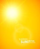 Fondo del verano, sol del verano con la llamarada de la lente Imágenes de archivo libres de regalías