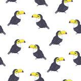Fondo del verano del vector toucans Diseño de la impresión, del papel o de la materia textil del verano Elemento del modelo incon fotos de archivo libres de regalías