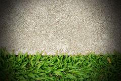 Fondo del verde de hierba Imagen de archivo