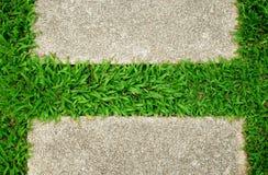 Fondo del verde de hierba Fotografía de archivo libre de regalías