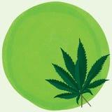 Fondo del verde de la hoja de la marijuana stock de ilustración