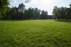Fondo del verde del césped de la hierba Fotos de archivo libres de regalías