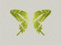Fondo del vidrio de la mancha del color verde de la mariposa de las alas Libre Illustration