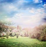 Fondo del villaggio del paese di estate o della primavera con gli alberi di fioritura e prato inglese in parco Fotografia Stock