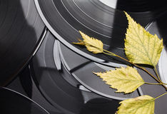 Fondo del vinile di autunno Fotografie Stock