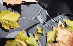 Fondo del vinile di autunno Immagini Stock