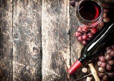 Fondo del vino Vino rojo con los vidrios con las uvas Fotos de archivo libres de regalías