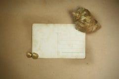 Fondo del vintage con la postal vieja, fotos de archivo libres de regalías
