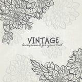 Fondo del vintage con las dalias de las flores para su text-EPS10 Foto de archivo libre de regalías