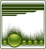 Fondo del Web con la hierba Imagen de archivo