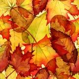 Fondo dell'acquerello delle foglie di autunno Immagini Stock Libere da Diritti