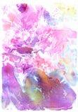 Fondo dell'acquerello di rosa di Pomantic Immagine Stock Libera da Diritti