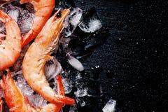 Fondo dell'alimento, gamberetto cucinato congelato con ghiaccio, fondo nero immagine stock