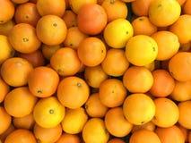 Fondo dell'arancia navel Fotografia Stock