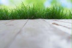 Fondo dell'erba verde della priorità alta del fondo del bokeh del pavimento Immagine Stock Libera da Diritti