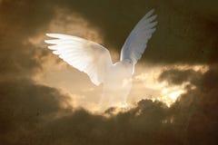 Fondo dell'estratto della colomba dell'annata Fotografie Stock