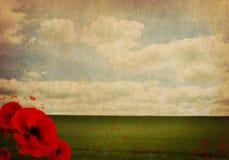 Fondo dell'estratto di guerra mondiale WW1 primo con i papaveri fotografie stock