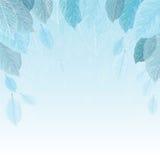 Fondo dell'illustrazione di vettore delle foglie nel gelo Fotografia Stock Libera da Diritti