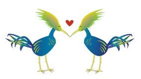 Fondo dell'isolato dell'uccello di amore Fotografia Stock