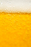 Fondo della birra Fotografie Stock
