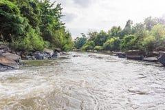 Fondo della cascata con la vista della foresta Fotografia Stock Libera da Diritti