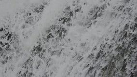 Fondo della cascata della primavera stock footage