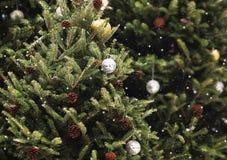 Fondo della decorazione dell'albero di abete di natale e rappresentazione verdi 3d Fotografie Stock Libere da Diritti