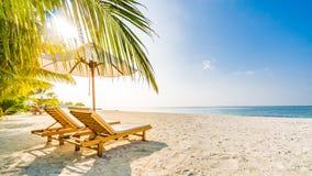 Fondo della destinazione di viaggio di estate Scena della spiaggia di estate, ombrello di sole dei letti del sole e palme immagine stock