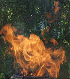 Fondo della fiamma Fotografie Stock