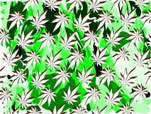 Fondo della foglia della marijuana in verde ed in bianco Fotografia Stock Libera da Diritti