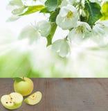Fondo della frutta delle mele con le foglie Fotografia Stock