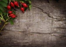 Fondo della frutta di autunno Struttura di legno Immagini Stock Libere da Diritti