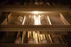 Fondo della macchina dell'incubatrice dell'uovo Uovo dell'uccello con la covata nell'azienda agricola fotografia stock libera da diritti
